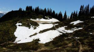 Schneefeld auf der Strecke des Schwarzach Trail Salzburgerland